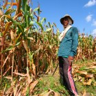 An Agrarian Crisis in the Making