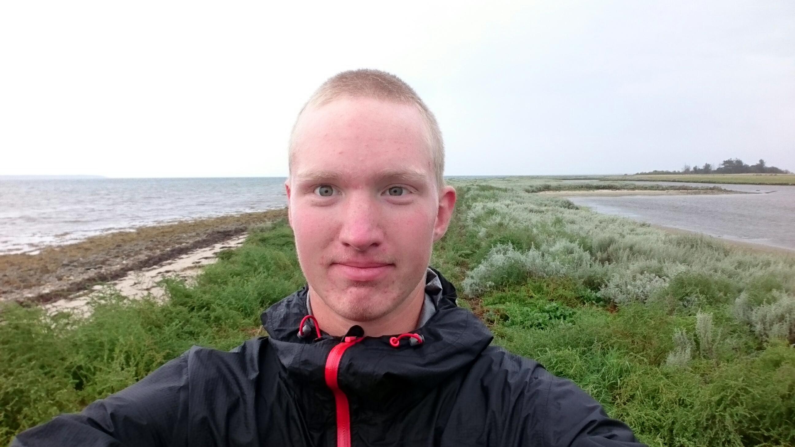 Hjarnø
