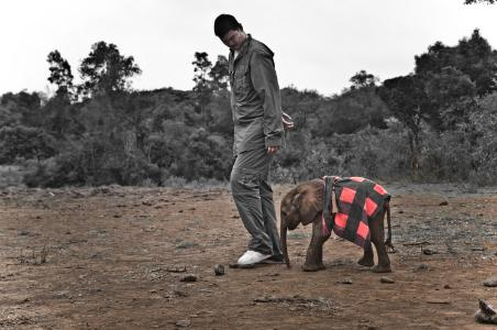 Yao Ming with a baby elephant