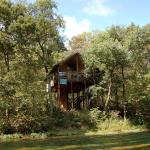 10 Tree House Hotels In The U S