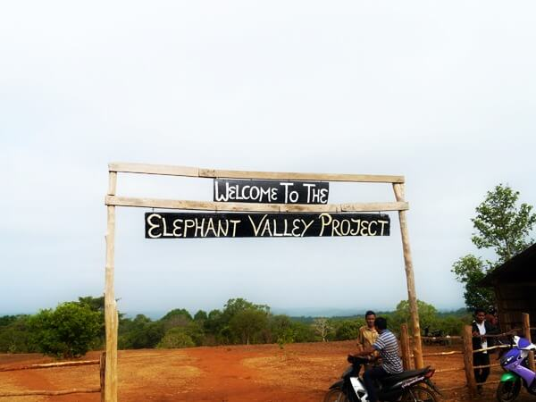 elephant valley project