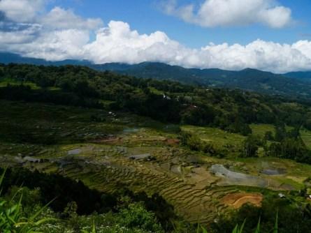Tana Toraja: adembenemende landschappen en de meest bijzondere rituelen