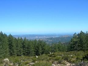 Aussicht von der Auffahrt zum Monte Limbara