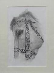 cavallo 2 400