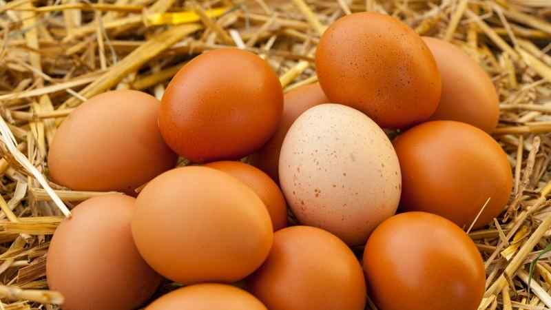 lekeli yumurta