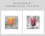 Gedruckte Tulpen