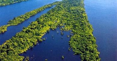 o-complexo-regional-da-amazonia-1