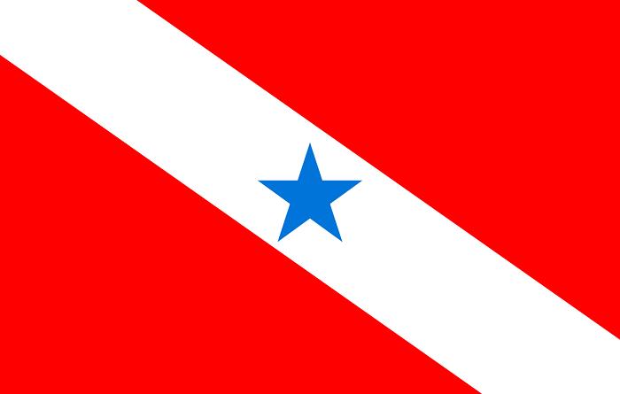 Bandeira_do_Pará_svg