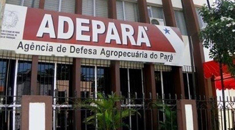 destaque-342014-adepara