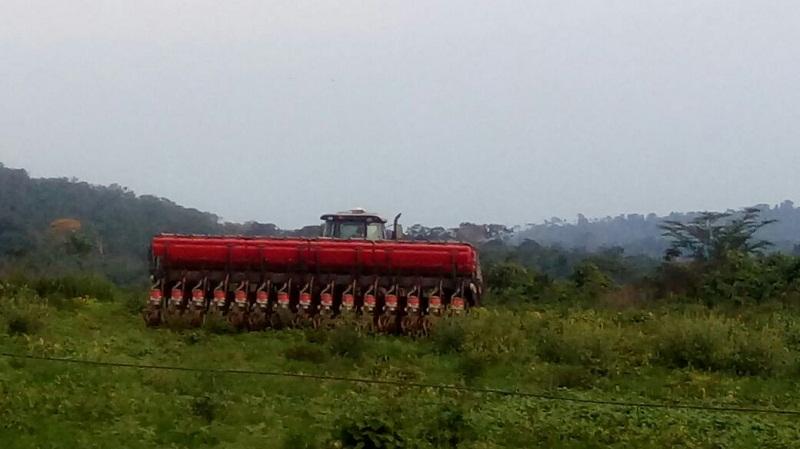 Área desecada para plantio soja em Novo Progresso)