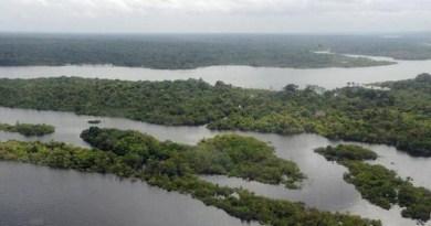 Amazonia-rios-Valter-Campanato