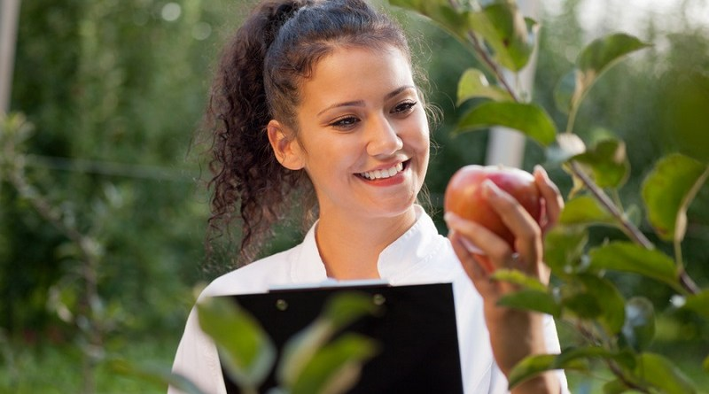smiling agronomist with notebook standing in apple orchard