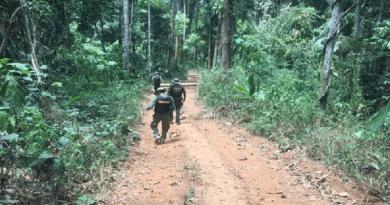 terra indigena
