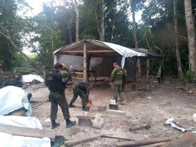As equipes destruíram acampamentos clandestinos Foto: ASCOM / SEMAS