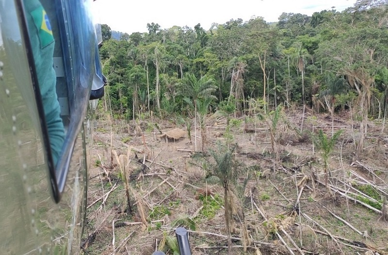 Agentes do Ibama encontram área de 72 hectares de devastação em terra indígena Koatinemo, no sudoeste do Pará. — Foto: Ibama