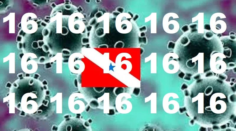 coronavirus 16