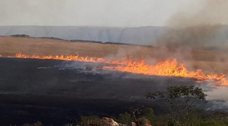 queima lera