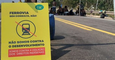 (Foto:Jornal Folha do Progresso Adria Karoline)