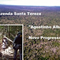 Veja diz que em Novo Progresso está o terceiro maior desmatador da Amazônia