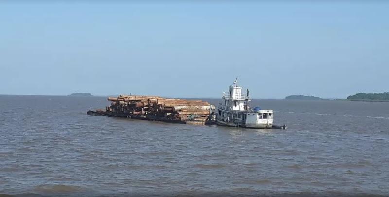Madeira ilegal apreendida em Curralinho é avaliada em mais de R$200 mil. — Foto: Reprodução / Marinha do Brasil