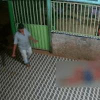 Câmeras registram mulher sendo estuprada na calçada, em Placas