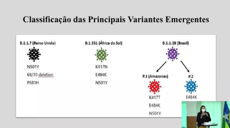 Classificação das principais variantes — Foto: Reprodução/Governo de Rondônia