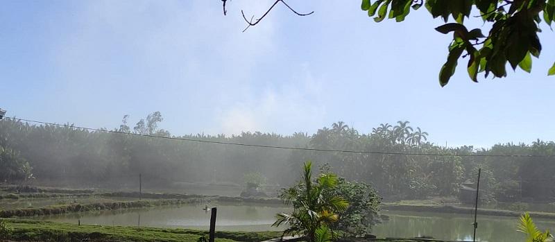 Poluição atingi propriedade rural na redondeza (Foto:Via WhatsApp)