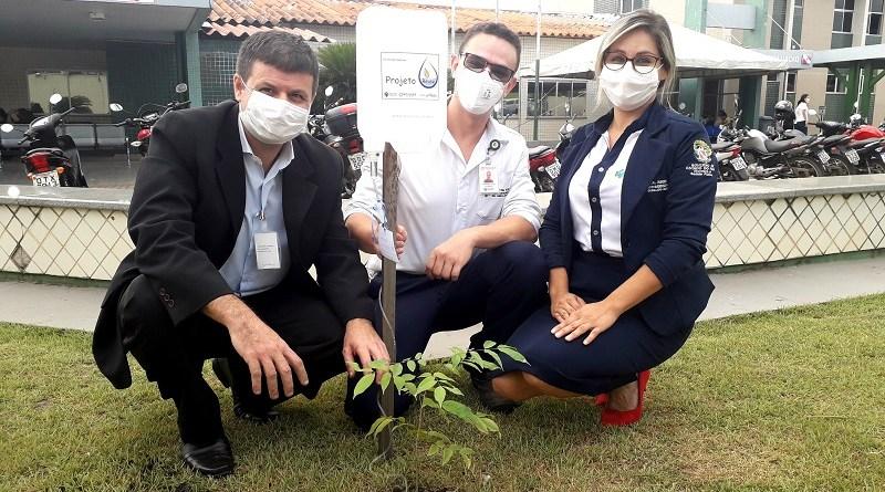 HRSP já plantou dezenas de mudas na unidade. Fotografia Comunicação Pró-saúde
