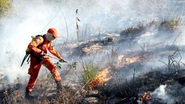 Combate ao incêndio na Chapada Diamantina - 2015 (Foto: Mateus Pereira/GOVBA)