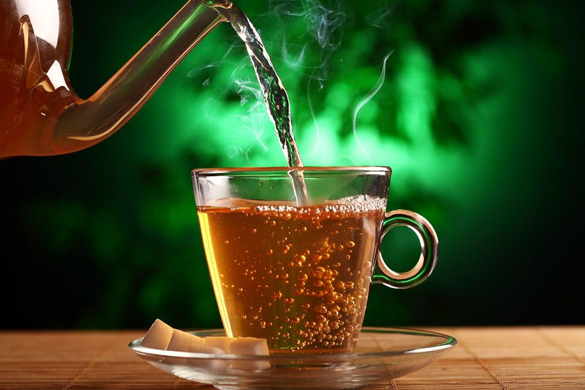 Substância presente em chá de Ayahuasca estimula formação de novos neurônios