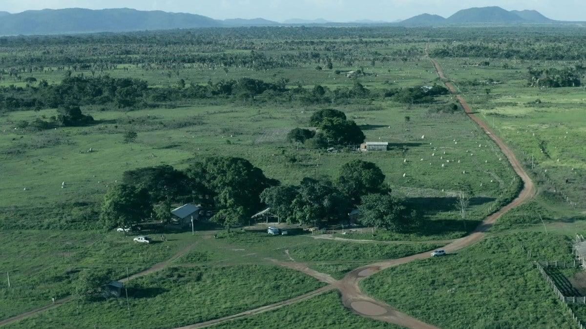 Agrotóxicos são lançados de avião sobre crianças e comunidades em disputa por terra