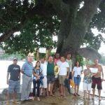 Corte das Castanheiras de Guarapari em pauta na Câmara