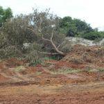 Operação constata crime ambiental em localidade de Guarapari