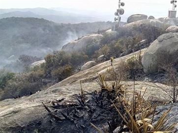 Sudema faz relatório para medir danos e ver o que fazer com Pico do Jabre após incêndio