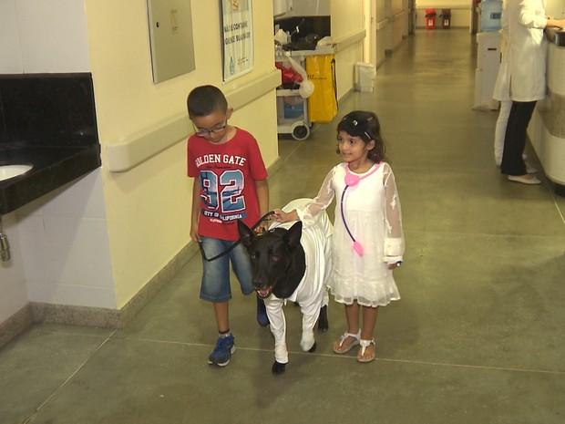 'Cãoterapia' ajuda a tratar crianças em hospital de Campina Grande