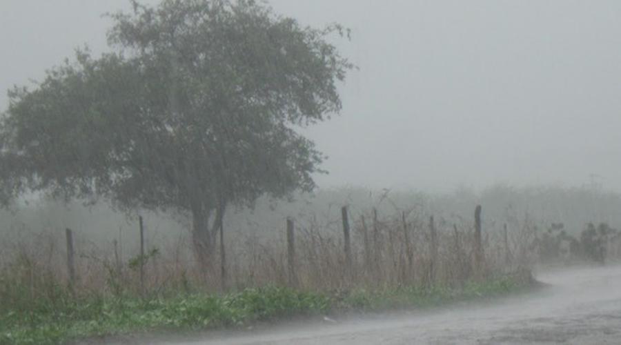 Chuvas voltam a ser registradas no Sertão