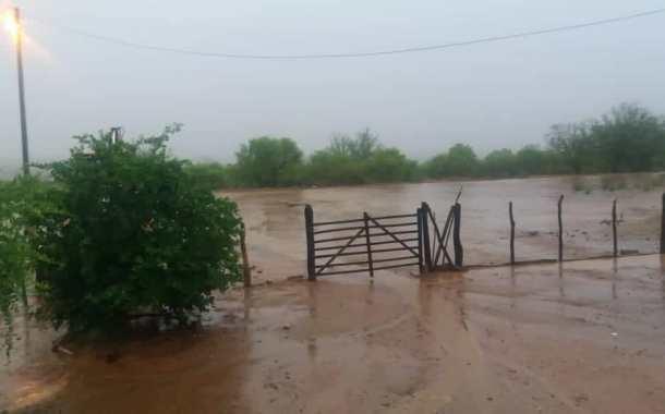 Chove 68 mm no Sítio Mocambo, em Patos