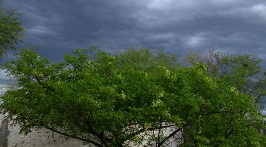 Previsão de pancadas de chuva em Patos e região