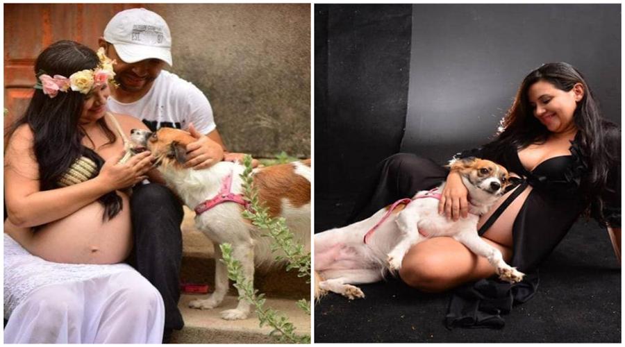 Grávida faz ensaio fotográfico acompanhada de sua cadela, que ela diz ser