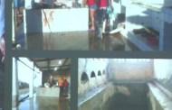 MPT vai investigar denúncias de trabalho escravo e infantil em mais de 70 abatedouros da PB