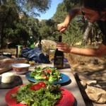 Salad and Wine in Santa Ynez