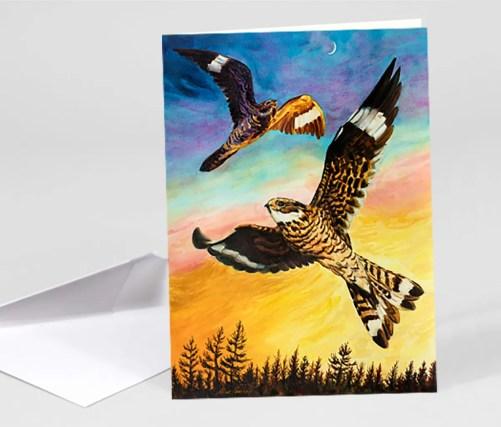 Nighthawk Notecard - Folias