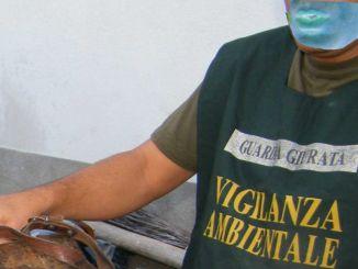 Bomba ecologica a Foligno, amianto e liquidi inquinanti nel terreno