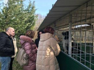 Trevi, il Comune attivo sul fronte del benessere degli animali