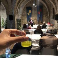 Bevagna celebra l'oro verde con o-live: l'olio nuovo dal vivo