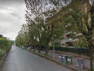 Potature alberi Foligno, restringimento di carreggiata nelle vie interessate