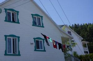 green-window-frames
