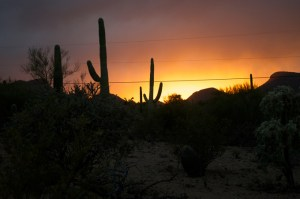 2-sunset-tucson
