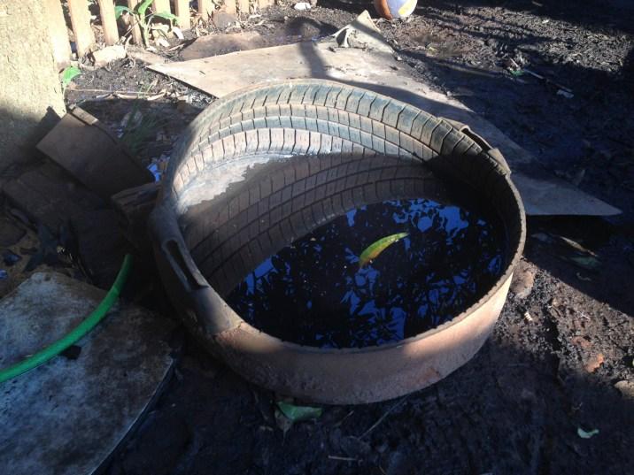 Upcycling vom feinsten. Aus alten Reifen werden Schüsseln