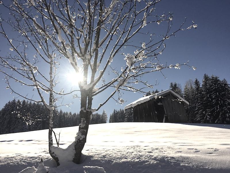 winterwonderland salzburg